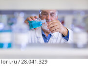 Купить «Senior male researcher carrying out scientific research in a lab», фото № 28041329, снято 27 апреля 2018 г. (c) PantherMedia / Фотобанк Лори