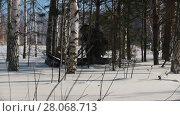 Купить «Man maneuvering on mini snowmobile on deep snowdrifts in the forest between the trees», видеоролик № 28068713, снято 19 марта 2018 г. (c) Константин Шишкин / Фотобанк Лори