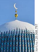 Купить «Купол соборной мечети. Санкт-Петербург», эксклюзивное фото № 28068797, снято 24 февраля 2018 г. (c) Александр Алексеев / Фотобанк Лори
