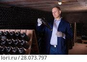 Купить «Male inspecting wine bottles in wine cellar», фото № 28073797, снято 22 января 2018 г. (c) Яков Филимонов / Фотобанк Лори