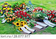 Купить «Flowers after a funeral in an old cemetery», фото № 28077977, снято 20 апреля 2019 г. (c) easy Fotostock / Фотобанк Лори