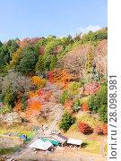 Купить «Nagoya, Obara Sakura in autumn», фото № 28098981, снято 10 апреля 2020 г. (c) easy Fotostock / Фотобанк Лори