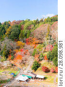 Купить «Nagoya, Obara Sakura in autumn», фото № 28098981, снято 17 июня 2019 г. (c) easy Fotostock / Фотобанк Лори
