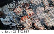 Купить «barbecue of pork cooked on the grill», видеоролик № 28112929, снято 10 июня 2017 г. (c) Володина Ольга / Фотобанк Лори