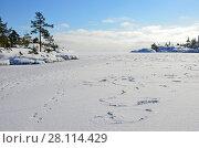 Купить «Россия, Ладожское озеро, залив Муролахти (Кочерга) в ясный морозный день», фото № 28114429, снято 24 февраля 2018 г. (c) Овчинникова Ирина / Фотобанк Лори