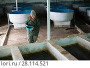 Купить «Woman feeding fish in tanks on farm», фото № 28114521, снято 4 февраля 2018 г. (c) Яков Филимонов / Фотобанк Лори