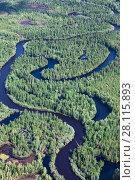 Купить «Forest plain with river», фото № 28115893, снято 20 июня 2017 г. (c) Владимир Мельников / Фотобанк Лори