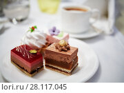 Купить «Plate with four pieces of different cakes», фото № 28117045, снято 14 ноября 2015 г. (c) Losevsky Pavel / Фотобанк Лори