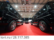 Купить «MOSCOW - MAR 07, 2016: Garage of special function for high-class cars at exhibition Oldtimer-Gallery in Sokolniki Exhibition Center. It is only one in Russia exhibition of vintage cars and technical antiques», фото № 28117385, снято 7 марта 2016 г. (c) Losevsky Pavel / Фотобанк Лори