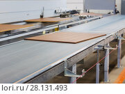 chipboards on conveyer at furniture factory. Стоковое фото, фотограф Syda Productions / Фотобанк Лори