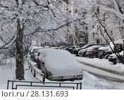 Купить «Автомобили в зимнем дворе», фото № 28131693, снято 22 февраля 2018 г. (c) Татьяна Чепикова / Фотобанк Лори
