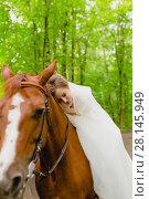 Купить «Beautiful young bride with the horse», фото № 28145949, снято 22 июля 2017 г. (c) Чебеляев Геннадий / Фотобанк Лори