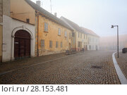 Купить «Старинная мощеная улица в историческом центре города Зноймо, Чехия», фото № 28153481, снято 28 декабря 2017 г. (c) Bala-Kate / Фотобанк Лори