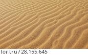 Купить «Blowing wind makes rippled patterns in sand», видеоролик № 28155645, снято 8 декабря 2016 г. (c) Алексей Кузнецов / Фотобанк Лори