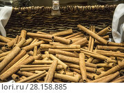 Купить «Sticks of cinnamon for sale in bulk, in a basket on a outdoor market.», фото № 28158885, снято 23 июля 2019 г. (c) age Fotostock / Фотобанк Лори