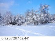 Купить «Зимний пейзаж. Свиблово. Юрловский народный парк», фото № 28162441, снято 6 февраля 2018 г. (c) Natalya Sidorova / Фотобанк Лори