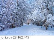 Купить «Зимний пейзаж. Свиблово. Юрловский народный парк», фото № 28162445, снято 6 февраля 2018 г. (c) Natalya Sidorova / Фотобанк Лори