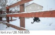 Купить «Rustic wooden fence in country style close-up. Winter, snow, suburban life», видеоролик № 28168805, снято 13 января 2018 г. (c) Mikhail Erguine / Фотобанк Лори