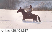 Купить «Young female rider riding a black horse through the drifts in the winter frozen forest», видеоролик № 28168817, снято 20 апреля 2019 г. (c) Константин Шишкин / Фотобанк Лори
