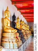 Купить «a series of seated Buddhas in a Thai temple in Bangkok», фото № 28168981, снято 15 ноября 2016 г. (c) Константин Лабунский / Фотобанк Лори