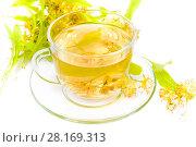 Купить «Чай из цветов липы в стеклянной чашке на белом фоне», фото № 28169313, снято 19 июля 2017 г. (c) Алёшина Оксана / Фотобанк Лори