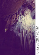 Купить «Picture of illuminated Grotte des Demoiselles in France», фото № 28170161, снято 2 декабря 2017 г. (c) Яков Филимонов / Фотобанк Лори