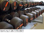 Купить «Set of heavy black dumbbells for men on rack in modern empty gym», фото № 28170861, снято 30 июня 2016 г. (c) Losevsky Pavel / Фотобанк Лори