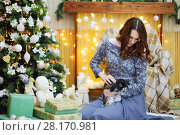 Купить «Woman in dress sits and holds bunny among gift boxes near christmas tree, focus on pet», фото № 28170981, снято 20 ноября 2015 г. (c) Losevsky Pavel / Фотобанк Лори