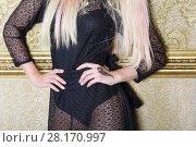 Купить «Blonde in black lace dress poses near wall with gilted molding in room, noface», фото № 28170997, снято 20 ноября 2015 г. (c) Losevsky Pavel / Фотобанк Лори