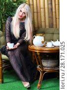 Купить «Blonde in black lace dress and bra poses with cup on sofa near table in studio», фото № 28171025, снято 20 ноября 2015 г. (c) Losevsky Pavel / Фотобанк Лори