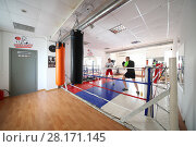 Купить «MOSCOW - MAR 25, 2016: Two man fight in modern gym New Sparta with boxing ring, In addition to standard set of fitness services New Sparta offers classes with champion - highly qualified trainers», фото № 28171145, снято 25 марта 2016 г. (c) Losevsky Pavel / Фотобанк Лори