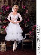 Купить «Pretty ballerina in white dress and pointe shoes poses in stylish studio», фото № 28171277, снято 27 ноября 2015 г. (c) Losevsky Pavel / Фотобанк Лори