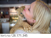 Купить «Blonde smiles and holds calf of lion close to her face in cozy cafe, close up», фото № 28171345, снято 13 июля 2016 г. (c) Losevsky Pavel / Фотобанк Лори