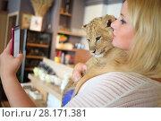 Купить «Woman holds funny calf of lion in cafe and makes selfie, focus on animal», фото № 28171381, снято 13 июля 2016 г. (c) Losevsky Pavel / Фотобанк Лори