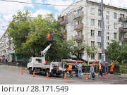 Купить «MOSCOW - JUL 14, 2016: Workers remove fallen tree after storm», фото № 28171549, снято 14 июля 2016 г. (c) Losevsky Pavel / Фотобанк Лори