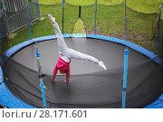 Купить «Slim woman tumbles on trampoline outdoor at summer day, top view», фото № 28171601, снято 18 сентября 2016 г. (c) Losevsky Pavel / Фотобанк Лори