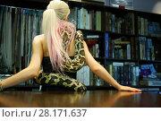 Купить «Blonde woman poses with big snake near table in shop, back view», фото № 28171637, снято 18 июля 2016 г. (c) Losevsky Pavel / Фотобанк Лори