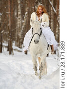 Купить «Young woman in white dress and white fur mantle rides on white horse in park», фото № 28171889, снято 15 января 2016 г. (c) Losevsky Pavel / Фотобанк Лори