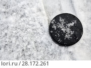 Купить «Hockey puck lies on snow-covered ice surface at outdoor skating rink», фото № 28172261, снято 21 января 2016 г. (c) Losevsky Pavel / Фотобанк Лори