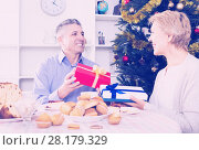 Купить «Mature couple give Christmas gifts», фото № 28179329, снято 23 марта 2019 г. (c) Яков Филимонов / Фотобанк Лори