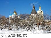 Купить «Москва, Новоспасский монастырь зимой», фото № 28182973, снято 27 февраля 2018 г. (c) Natalya Sidorova / Фотобанк Лори