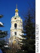 Купить «Москва, Новоспасский монастырь зимой», фото № 28182977, снято 27 февраля 2018 г. (c) Natalya Sidorova / Фотобанк Лори