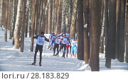 Купить «KAZAN, RUSSIA - March, 2018: view of the approaching group of professional skiers participating in the ski marathon in winter forest», видеоролик № 28183829, снято 9 апреля 2020 г. (c) Константин Шишкин / Фотобанк Лори