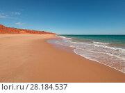 Купить «Ochre-coloured earth and sandstone cliffs with white sands beach Dampier Peninsula, Kimberley, Western Australia. July 2016.», фото № 28184537, снято 24 мая 2018 г. (c) Nature Picture Library / Фотобанк Лори