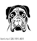 Купить «Portrait of a bullmastiff», иллюстрация № 28191401 (c) Сергей Лаврентьев / Фотобанк Лори