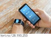 Купить «hands with smartphone and smart watch social media», фото № 28193253, снято 13 августа 2015 г. (c) Syda Productions / Фотобанк Лори