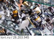 Купить «Image of stand with nice baitcasting reel», фото № 28203945, снято 16 января 2018 г. (c) Яков Филимонов / Фотобанк Лори