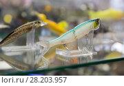 Купить «Picture of variety ocean fishing lures in the shop», фото № 28203957, снято 16 января 2018 г. (c) Яков Филимонов / Фотобанк Лори