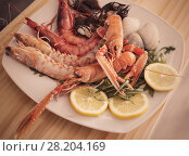 Купить «Seafood dish with langoustines, shrimps and clams», фото № 28204169, снято 26 января 2018 г. (c) Яков Филимонов / Фотобанк Лори