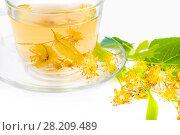Купить «Чай из цветов липы в стеклянной чашке крупным планом на белом фоне», фото № 28209489, снято 19 июля 2017 г. (c) Алёшина Оксана / Фотобанк Лори